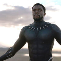Chadwick Boseman in Marvel's Black Panther
